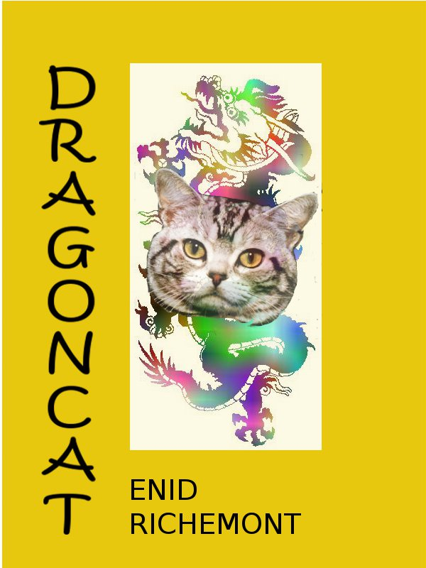 Cover image for Dragoncat